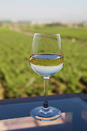 Sula Wines, Nashik, Indien<br /> COPYRIGHT 2009 CHRISTINA SJ&Ouml;GREN<br /> ALL RIGHTS RESERVED