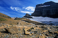 Glacially scoured land from recently retreated Grinnell Glacier. Glacier National Park, Montana