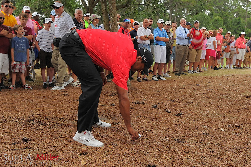 Tiger Woods checks the lay of his ball in the rough on the 16th hole during the final round of the Players Championship at the TPC Sawgrass on May 13, 2012 in Ponte Vedra, Fla. ..©2012 Scott A. Miller..