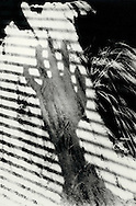 Abstract Hand shadows with super imposed textures.
