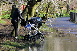 © Licensed to London News Pictures. 17/02/2020. London, UK.  A woman with a pram struggles in Clissold Park, north London which is flooded by heavy rain from Storm Dennis. Photo credit: Dinendra Haria/LNP