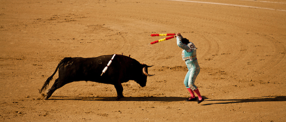 bandarillero charge: the bandarilleros take it in turn to plunge a couple of yard-long hooked tips into the bulls back