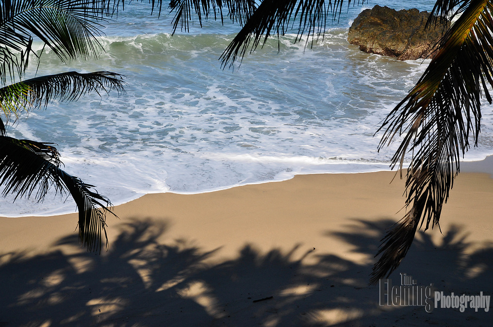A sandy beach framed by palm trees in San Pancho, Mexico.