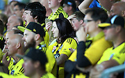 Fans watch on as the Phoenix concede another goal during the Round 22 A-League football match - Wellington Phoenix V Adelaide United at Westpac Stadium, Wellington. Saturday 5th March 2016. Copyright Photo.: Grant Down / www.photosport.nz