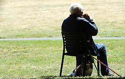© Licensed to London News Pictures. 18/06/2015<br /> A man sitting in Greenwich Park with his dog.<br /> Greenwich Sunny weather in South East London,UK.<br /> Early morning sunny weather in Greenwich Village and Greenwich Park today (18,06,2015)<br /> (Byline:Grant Falvey/LNP)