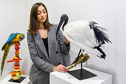 © Licensed to London News Pictures. 05/10/2019. LONDON, UK. Artist Elle Kaye, who specialises in taxidermy, with two of her works, a macaw and an ibis, at The Other Art Fair, presented by Saatchi Art.  120 international, independent artists are displaying their works to be sold direct to buyers.  The fair is taking place at Victoria House in Bloomsbury until 6 October 2019.  Photo credit: Stephen Chung/LNP