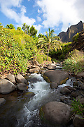 Kalalau Valley Stream, Napali Coast, Kauai, Hawaii