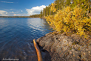 Lewis Lake in Yellowstone National Park in Wyoming