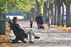 © Licensed to London News Pictures. 10/10/2018<br /> GREENWICH, UK.<br /> An autumnal Greenwich Park,Greenwich on a sunny October day in London, temperatures at around 22C.<br /> Photo credit: Grant Falvey/LNP