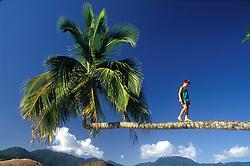 Ilha Grande - Angra dos Reis - RJ - Brasil.Novembro/2004.Praia do Aventureiro. Menino caminha no coqueiro./Ilha Grande, Adventurer Beach; boy walks on palm tree..Monique Cabral/Argosfoto.