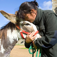 New Donkey at Carisbrooke Castle. Photographs of the Isle of Wight by photographer Patrick Eden photography photograph canvas canvases