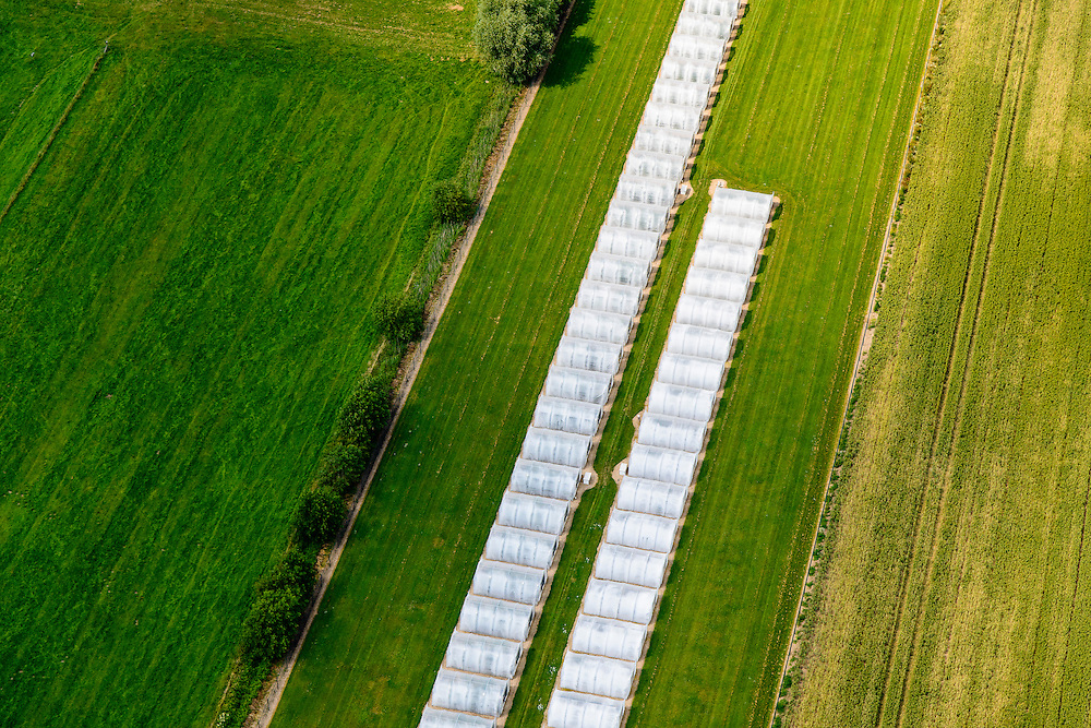 Nederland, Gelderland, Gemeente  Wageningen, 26-06-2013; uiterwaarden Neder-rijn, plastic tunnels voor verbouw van gewassen in plaats van kassen.<br /> Plastic tunnels for cultivation of crops replace greenhouses.<br /> luchtfoto (toeslag op standaard tarieven);<br /> aerial photo (additional fee required);<br /> copyright foto/photo Siebe Swart.