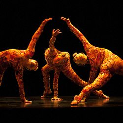 London, UK - 4 January 2012: contortionists perform during the Cirque Du Soleil Kooza dress rehearsal at the Royal Albert Hall. Since its premiere in April of ..2007, KOOZA has captivated close to four million spectators in North America and Japan.  London will be the first destination of the KOOZA European tour starting the ..5th of January. Written and directed by David Shiner, KOOZA is a return to the origins of Cirque du Soleil combining two circus traditions - acrobatic performance and ..the art of clowning.  KOOZA highlights the physical demands of human performance in all its splendor and fragility, presented in a colorful m&eacute;lange that emphasizes ..bold slapstick humor. This image can be quickly and easily purchased from some of the major international stock agencies:<br />