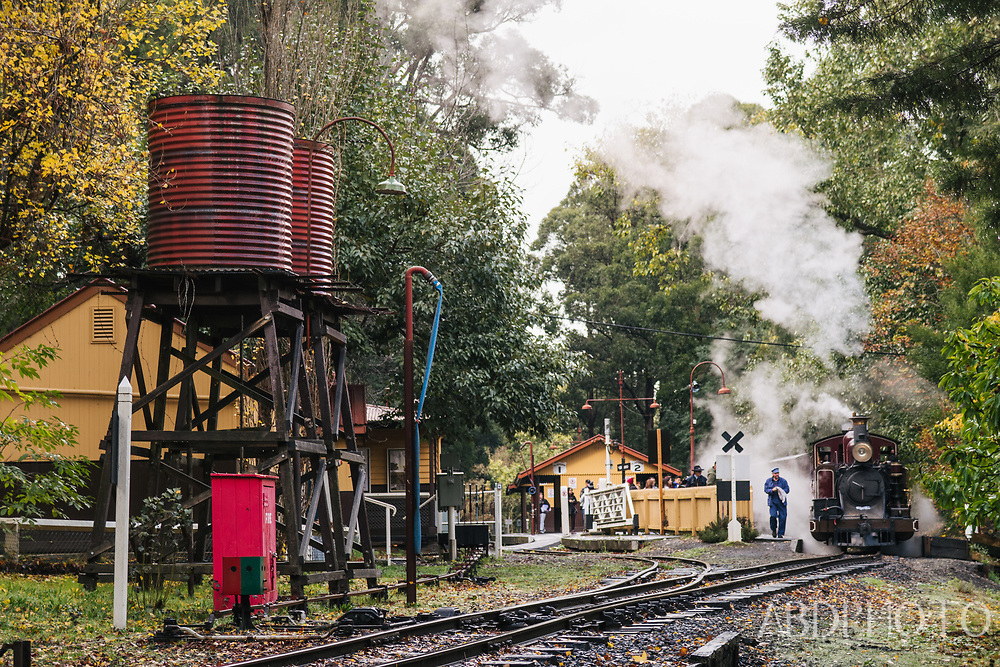 Melbourne Victoria Australia Puffing Billy steam train in Emerald Lake Park rainforests of the Dandenong Ranges Puffing Billy