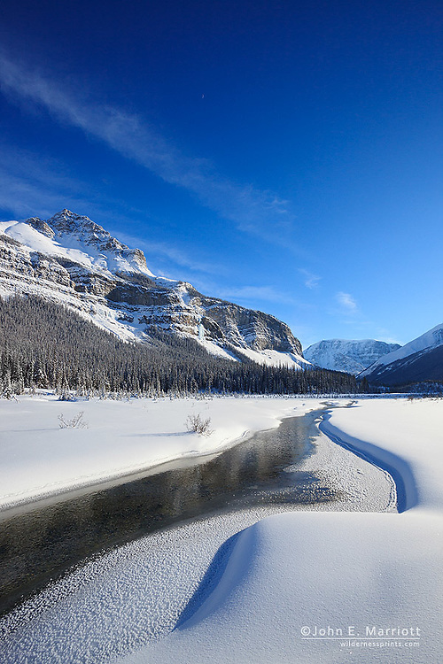 Spectacular winter scenery at Beauty Creek Flats below Tangle Ridge along the Icefields Parkway, Jasper National Park, Alberta, Canada