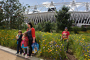 Spectators admire the Ribbon of Gold, 7 annual species of English garden flowers created by 100 staff with the main Olympic stadium in the background during the London 2012 Olympics. London's Olympic Park, at just under a square mile, is the largest new park in the city for more than 100 years. The planting of 4,000 trees, 300,000 wetland plants and more than 150,000 perennial plants plus  nectar-rich wildflower make for a colourful setting for the Games. This land was transformed to become a 2.5 Sq Km sporting complex, once industrial businesses and now the venue of eight venues including the main arena, Aquatics Centre and Velodrome plus the athletes' Olympic Village. After the Olympics, the park is to be known as Queen Elizabeth Olympic Park.
