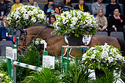 Geir Gulliksen - VDL Groep Quatro<br /> Gothenburg Horse Show 2019<br /> © DigiShots