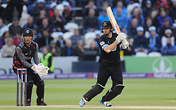 Sussex's Chris Nash in action.  - Mandatory by-line: Alex Davidson/JMP - 01/06/2016 - CRICKET - The 1st Central County Ground - Hove, United Kingdom - Sussex v Somerset - NatWest T20 Blast