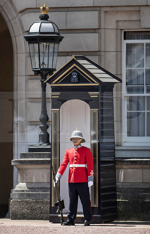 © Licensed to London News Pictures. 26/06/2017. London, UK. A member of the 2nd Battalion, Princess Patricia's Canadian Light Infantry stands on sentry duty at Buckingham Palace. The Canadian Light Infantry are taking part in the Changing of the Guard Ceremony as part of the 150th anniversary of the founding of the nation of Canada. Photo credit: Peter Macdiarmid/LNP