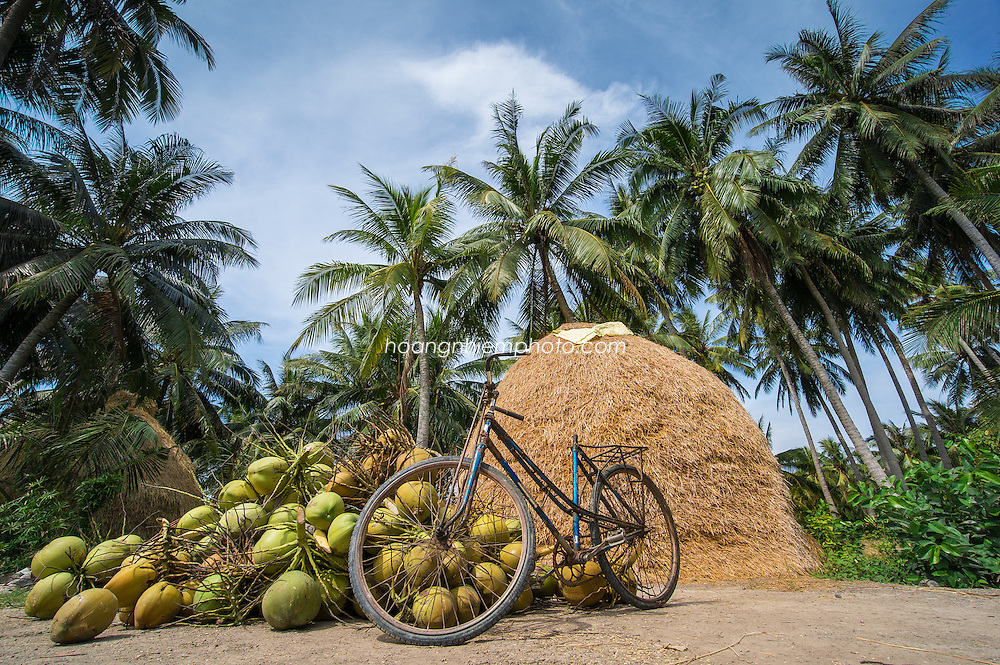 Vietnam Images-landscape-Mekong delta-Ben Tre phong cảnh việt nam