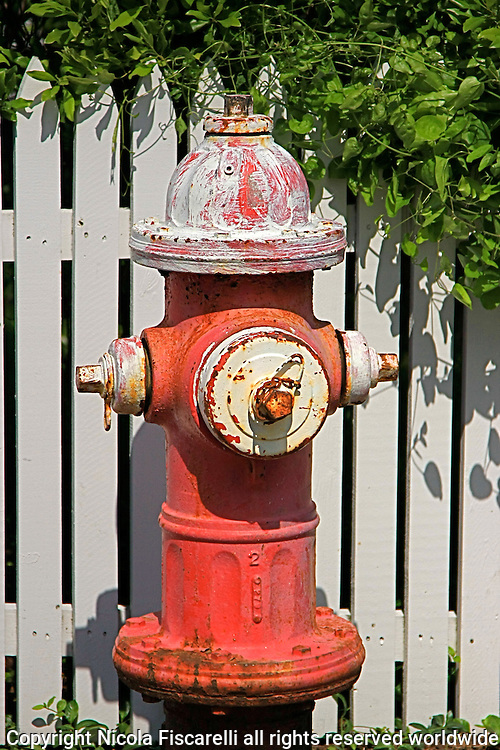 Close-up of  a Provincetown fire hydrant with picket fence in the background.