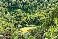 A dormant volcano known as Trou aux Cerfs in Curepipe, Mauritius. The crater, with water in it, is 80 meters deep.