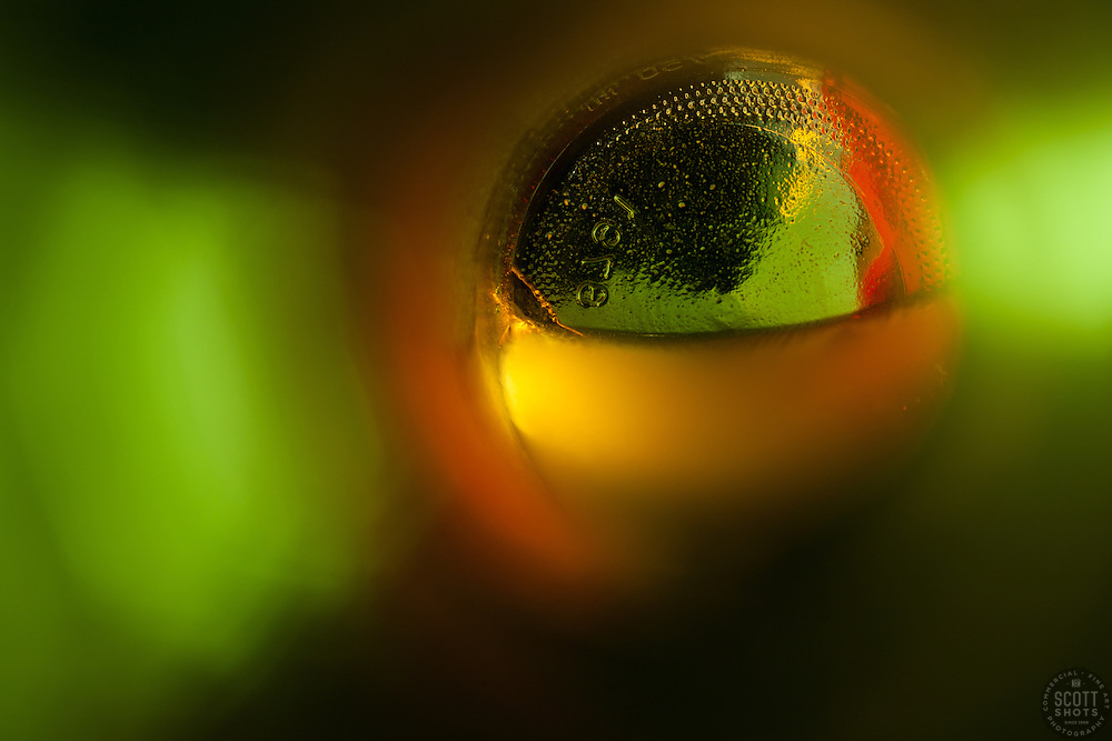 """""""Beauty at the Bottom: Sake 1"""" - This is a photograph of a sake bottle containing unfiltered sake, shot right down inside the mouth of the bottle."""