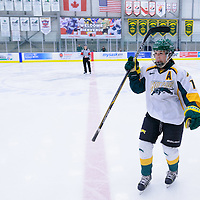 5th year forward Kylie Gavelin (13) of the Regina Cougars in action during the Women's Hockey Home Game on November 26 at Co-operators arena. Credit: Arthur Ward/Arthur Images