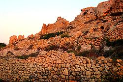 MALTA GOZO ZEBBUG 20JUL06 - Detail of dry stone wall...jre/Photo by Jiri Rezac..© Jiri Rezac 2006..Contact: +44 (0) 7050 110 417.Mobile: +44 (0) 7801 337 683.Office: +44 (0) 20 8968 9635..Email: jiri@jirirezac.com.Web: www.jirirezac.com