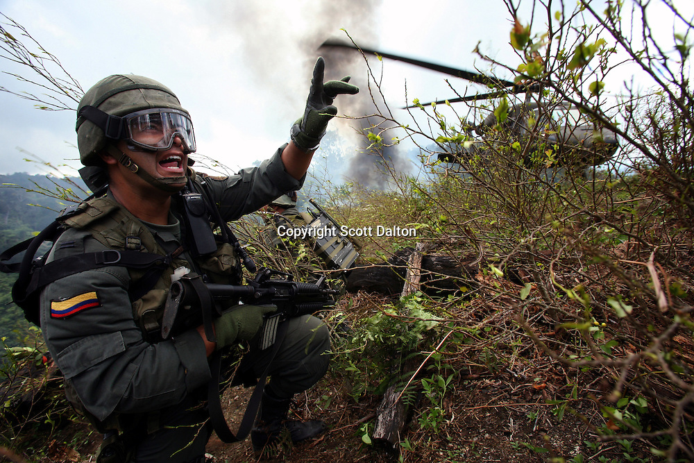 A member of the Jungla, a unit of the Colombian anti-narcotics police, signals to his troops as a Blackhawk helicopter arrives to pick them up after destroying a drug lab in a coca field in the Colombian state of Bolivar, on July 3, 2007. (Photo/Scott Dalton)