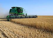 Israel, Negev Desert, combine harvester wheat Harvesting, May 2007