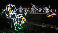 Hamptonburgh, New York - A view of the Holiday Lights in Bloom display in the Orange County Arboretum at Thomas Bull Memorial Park on Dec. 1, 2011. The Holiday Lights in Bloom display features beautiful, garden-themed lights in the forms of flowers, animals, and insects.
