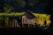 Than Taung village, Nyaung Shwe, Inle Lake, Myanmar