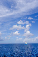 Beautiful blue ocean water horizon and bright sky with puffy clouds on a sunny afternoon in Barbados