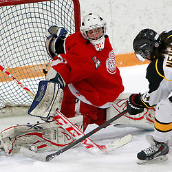 AURORA, ON - Jan 29 : Ontario Junior Hockey League Game Action between the Hamilton Red Wings and the Aurora Tigers, Mark Sinclair #31 of the Hamilton Red Wings Hockey Club makes the save on Liam Neuman #61 of the Aurora Tigers Hockey Club during second period game action.<br /> (Photo by Brian Watts / OJHL Images)