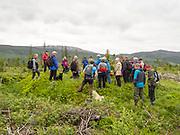 Kullmile ved den gamle ferdselsvegen mellom Selbu og Tydal i Sør-Trøndelag. Vegen var i bruk som hovedveg mellom de to kommunene i Neadalen fra ca 1820 til ca 1860. En kullmile er et anlegg for fremstilling av trekull. Hensikten med å omgjøre ved til trekull er at man fjerner det meste av vannet i veden for å oppnå høyere temperatur ved videre forbrenning. Produksjon av trekull har foregått i flere tusen år, og har sammenheng med utvinning og bearbeiding av metaller (særlig jern). I Selbu kobber. Wikip: Reismile: Marken der milen skal bygges jevnes. Byggingen starter ved at det blir reist en stokk på høykant i midten av milen («kongen»). Denne stokken blir gjerne slått ned i marken, og stives av, slik at den står støtt. På siden av stokken blir det laget en sjakt vertikalt, som skal fungere for opptenning av milen og som midlertidig avtrekk. Fra denne stokken legges runde trestrangler radialt ut, nesten til kanten av milen. Over disse stranglene legges kløvet ved horisontalt, slik at det blir et luftrom under milen. Veden i denne grunnkonstruksjonen trenger ikke å være tørr. <br /> Deretter starter stablingen av veden i selve milen. Veden reises på høykant med en liten helling inn mot «kongen». Nederst og nærmest kongen stables ekstra tørr granved, gjerne også med innslag av tyrived. Årsaken er at denne delen av milen skal fungere som brennkammer. Videre utover reises veden, hele tiden med helling mot midten av milen. Lengden på vedkubbene kan være fra ca. 1m til ca.2m, avhengig av størrelsen på milen. Den groveste veden legges midtveis mellom senter og kanten. Hellingen på milen er størst nærmest kanten, og ytterst er hellingen ca. 60°. Ytterst jevnes milen til med større og mindre vedkubber, slik av overflaten blir mest mulig jevn. Deretter dekkes milen med et lag granbar og gjerne lett torv, som skal fungere som en slags isolering. Til slutt dekkes til med et lag leirholdig jord. Dekklaget over milen skal i alt være ca. 20 cm. Ve