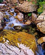 Apikuni Creek in Glacier National Park, Montana, USA