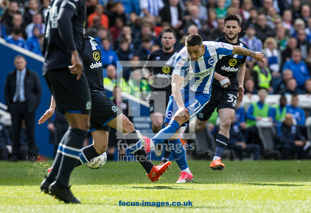 Anthony Knockaert of Brighton &amp; Hove Albion shoots during the Sky Bet Championship match at the American Express Community Stadium, Brighton and Hove<br /> Picture by Liam McAvoy/Focus Images Ltd 07413 543156<br /> 01/04/2017