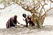Africa, Tanzania, Lake Eyasi, Hadza men play Mancala in the shade of an acacia tree. Small tribe of hunter gatherers AKA Hadzabe Tribe