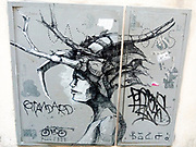 Alternative Medusa Street Art