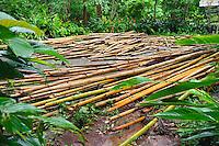 Pile of bamboo, Kanchanaburi Province, Thailand