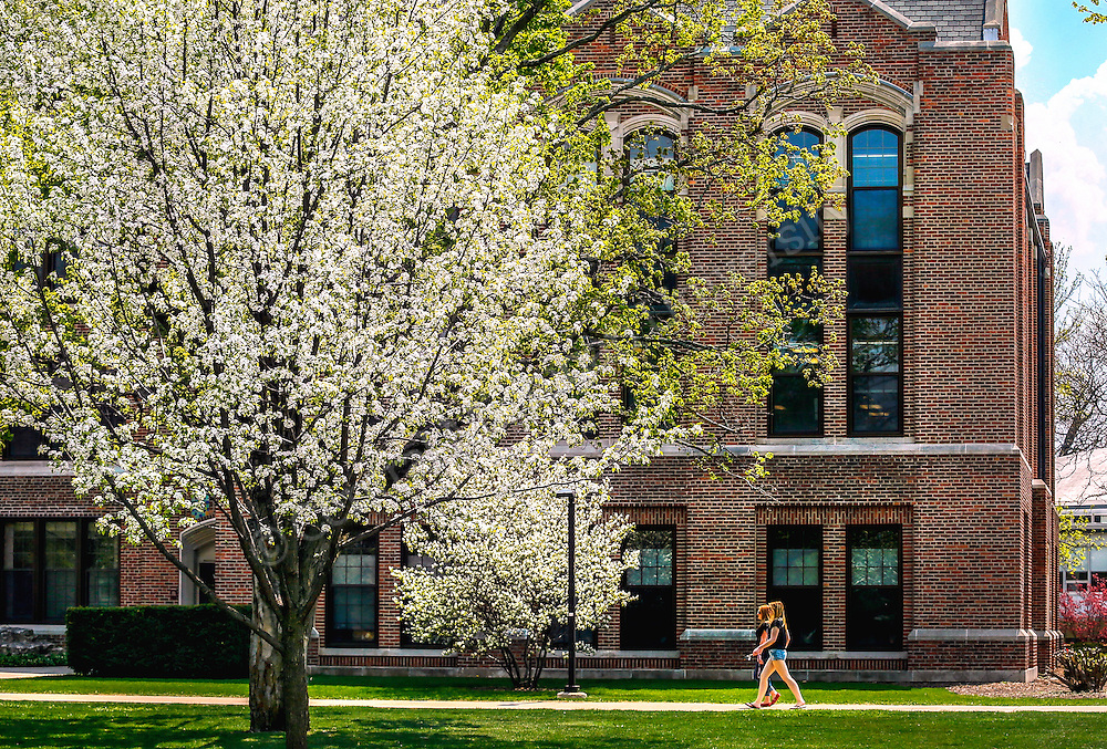 North campus in bloom May 2015. Photo by Steve Jessmore/ Central Michigan University