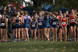 The Toronto Varsity Blue prepare for the start of the the women's  6K Dash at the 2013 CIS Cross Country Championships in London Ontario, Saturday,  November 9, 2013.<br /> Mundo Sport Images/ Geoff Robins
