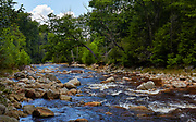 View of Red Creek, located along a hiking trail in the Dolly Sods Wilderness near Elkins, West Virginia