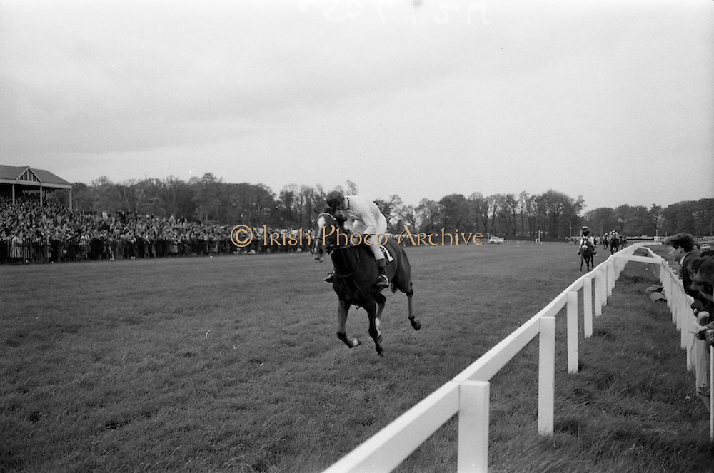 "08/05/1965<br /> 05/08/1965<br /> 08 May 1965<br /> The 1965 Gold Flake Meeting at Leopardstown Racecourse, Co. Dublin. Image shows Mrs J.R. Mullion's ""Glenn"" (A. Prendergast up) leading to win the Capstan Stakes from ""Keenogue"" and ""Another""."