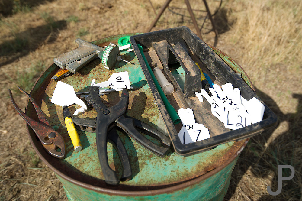 Woodward, OK - Some of the tools used for working cattle at Howard Ranch.