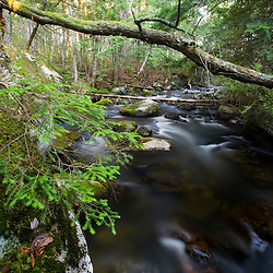 The outlet stream to Katahdin Lake in Maine's Northern Forest. Near Baxter State Park.