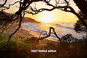 Bells Beach sunrise<br /> (limited edition of 40)<br /> 1.5M x 1M