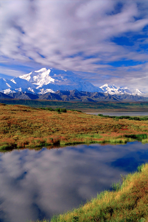 The most visited National Park in Alaska, Denali is the tallest peak in Nth American at 20320 ft. Bears,caribou,moose,sheep,goats,wolves and many other wild animals can be seen at times right by the roadside.  A must see in Alaska.