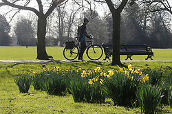 © Licensed to London News Pictures. 24/02/2014<br /> A Sunny spring day today (24.02.2014) in London.<br /> People enjoying the sunny weather in Greenwich Park,Greenwich.<br /> Photo credit :Grant Falvey/LNP